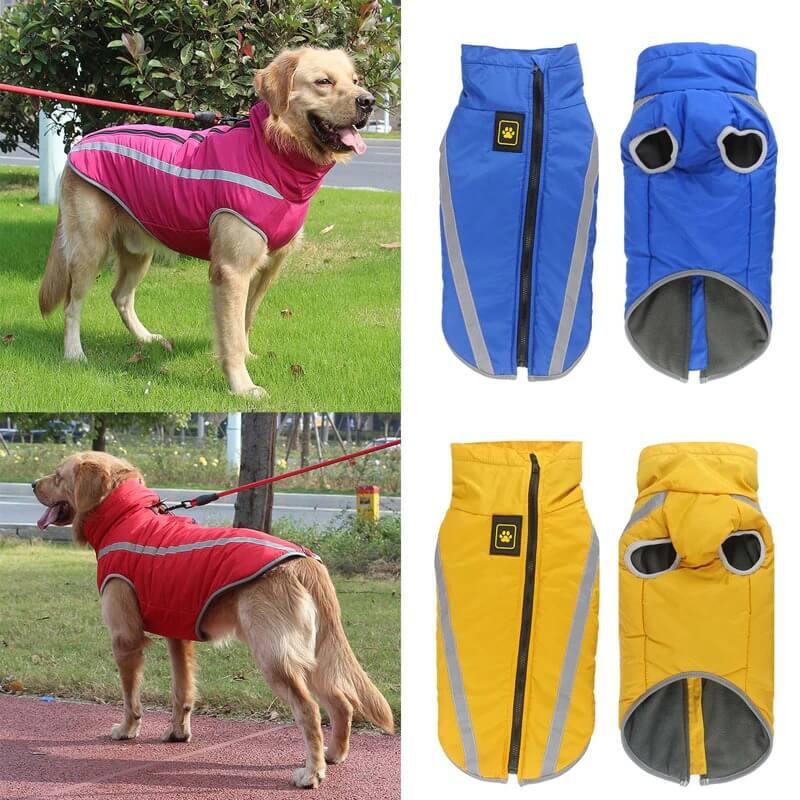 Buy Petsasa Padded Outdoor Dog Jacket, Medium & Large Dogs Online in Nairobi Kenya Pet Store